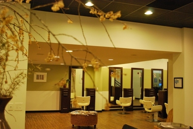 Ivy Aveda Color Salon