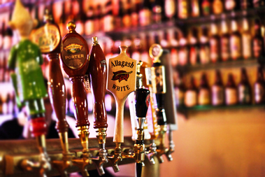 Best Craft & Imported Beer Bars/Pubs in Chicago
