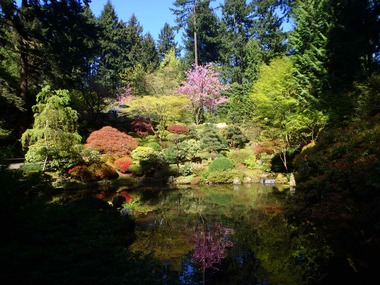 The Japanese Garden