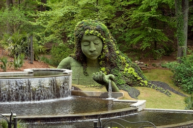 The Atlanta Botanical Gardens